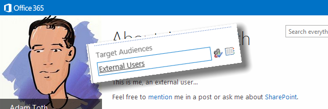 Audiences for External Users
